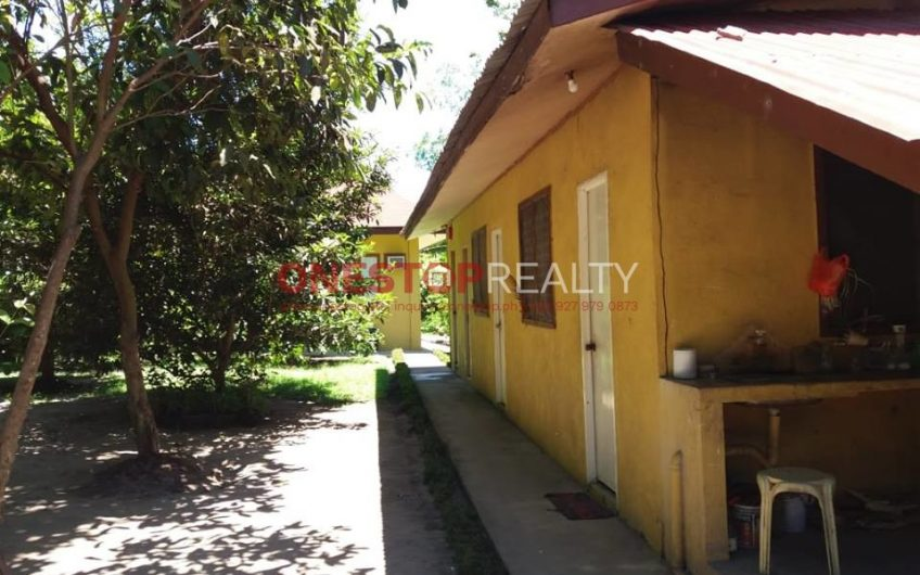 House and Lot in Sibulan