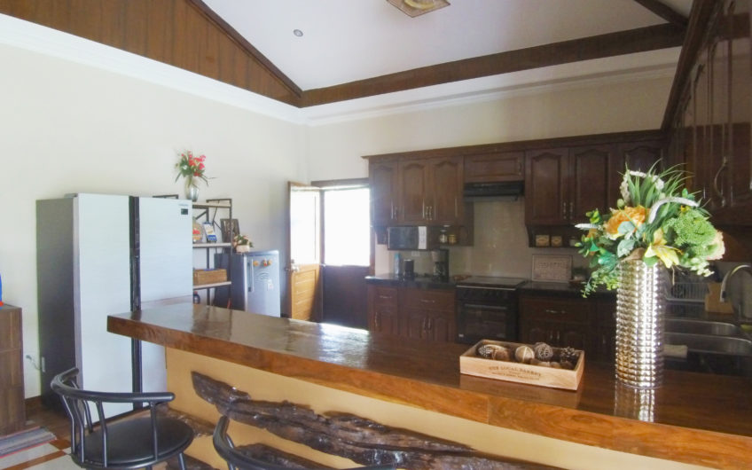 Modern House For Sale in Talay, Negros Oriental