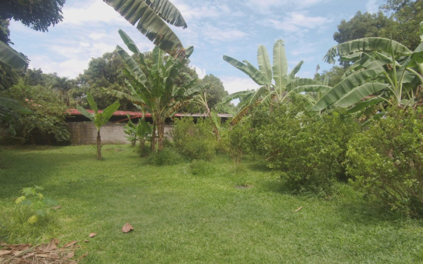 House and lot for sale in a Barangay Road in Dumaguete City, Negros Oriental (1276sqm)