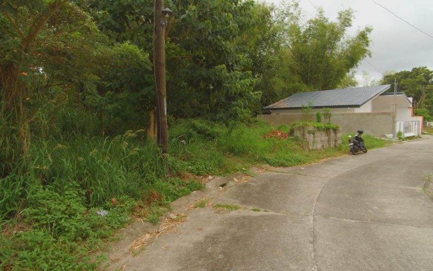 Residential Lot for Sale in Candau-ay, Dumaguete City Negros Oriental
