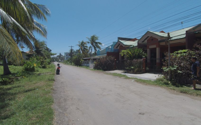 Lot with Apartment Units for Sale in Sibulan, Negros Oriental Philippines