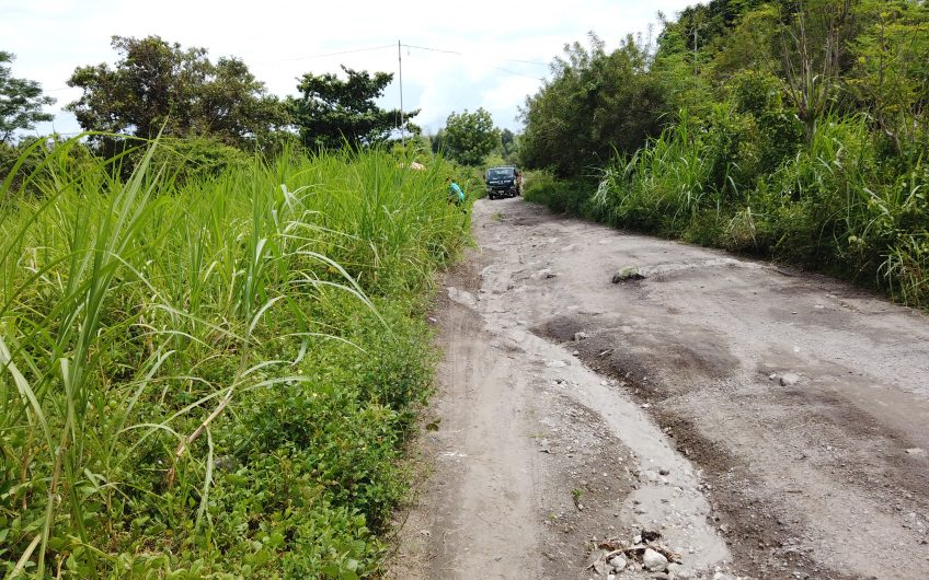1.1 Hectare Agricultural Lot for sale in San Miguel Bacong, Negros Oriental